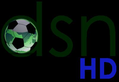 File:DSN HD logo.png