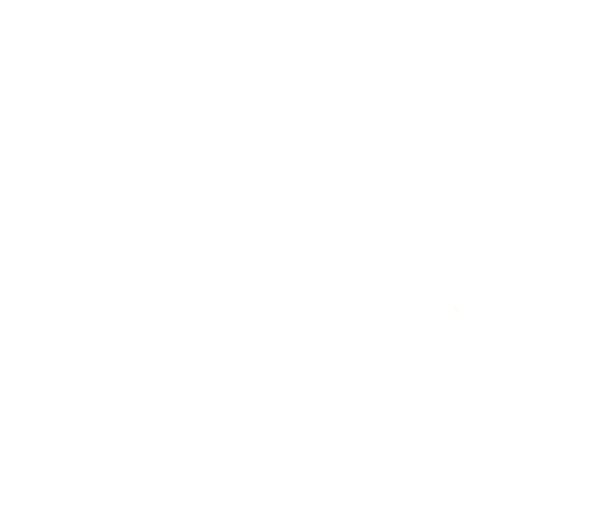File:COFR seal white.png