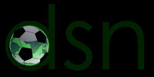 File:DSN logo.png