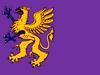 NC City flag.png