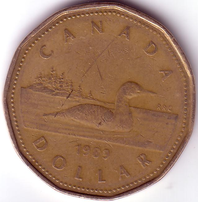 Can Cad 1989 1 Dollar Coin Collecting Wiki Fandom Powered By Wikia