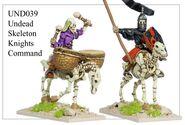UND39 Undead Skeleton Knights Command
