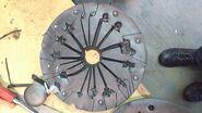 DM005 in mould