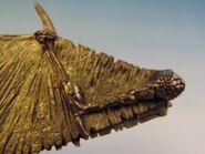 Dragon wings 12