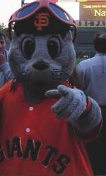 Lou seal giants mascot