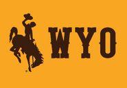 NCAA-MW-Wyoming Cowboys Gold Alt logo