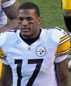 Mike Wallace (American football)