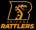 Second alternate black and copper colored helmet logo, with team name script.
