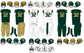 NCAA-AAC-South Florida Bulls Uniforms