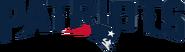 NFL-AFC-NE-Script and Mascot Logo