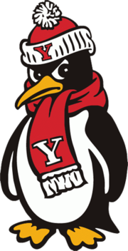 Image result for youngstown state penguins football