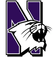 NCAA-Big 10-Northwestern Wildcats main logo