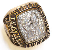 Super Bowl 19 Ring
