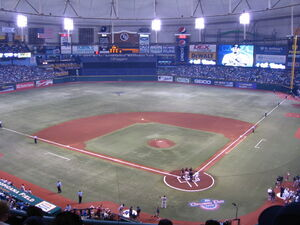 Tropicana Field Playing Field Opening Day 2010