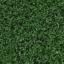Grasstaiga
