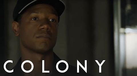 Colony 'Cells Size Each Other Up' from Episode 109