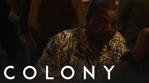 Colony 'Because Of A Dishwasher?'