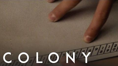 Colony 'Look For The Clues'