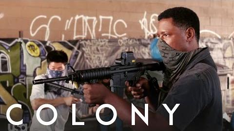 Colony Tory Kittles – Behind the Scenes Interview