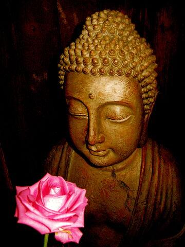 File:Buddha-8362.jpg