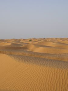849973 desert sahara