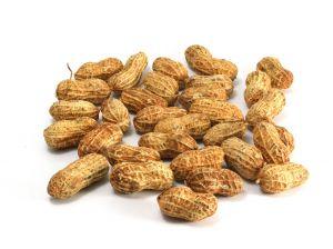 1020244 peanuts