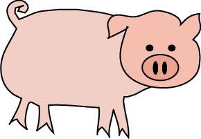 Pig-full-color