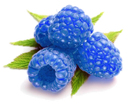 Blue Raspberries