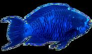 Blue Bright Fish