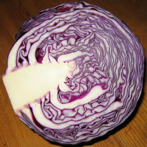 File:Red+cabbage-9230.jpg