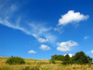 File:1045515 summer landscape.jpg