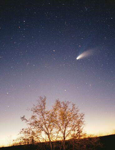 File:Comet.jpg