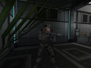 Bushmaster II