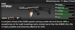 G36C Item
