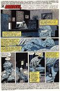 Daredevil Vol 1 298 001