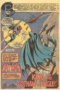 Batman Vol 1 254 001