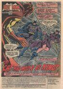Batman Vol 1 324 001