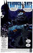 Batman Vol 1 555 001