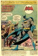 Batman Vol 1 265 001