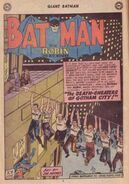 Batman Vol 1 233 001