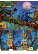 Black Panther Prey Vol 1 1 001