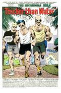 Incredible Hulk Vol 1 388 001