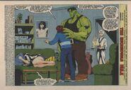 Incredible Hulk Vol 1 418 001