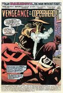 Daredevil Vol 1 125 001