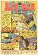 Batman Vol 1 91 001