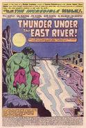 Incredible Hulk Vol 1 255 001