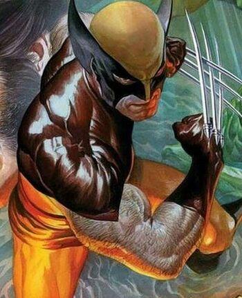 Wolverine3455