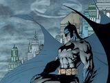 Bruce Wayne (Nueva Tierra)