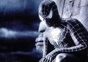 Schwarzer Spider-Man 2