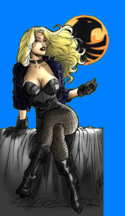 File:BlackCanary1.png